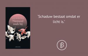 Recensie: Lucia van den Brink – Niemand zoals hij